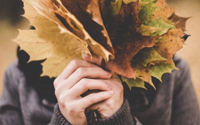 Lagerfeuer & Maronenduft – Unsere Familien Herbst Bucketlist